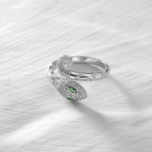 Would you sin with me?. Silver snake design ring